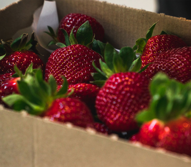 Charlies Strawberries Matakana